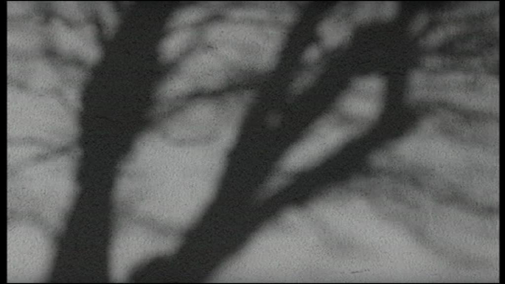 vlcsnap-2014-02-23-16h43m36s85