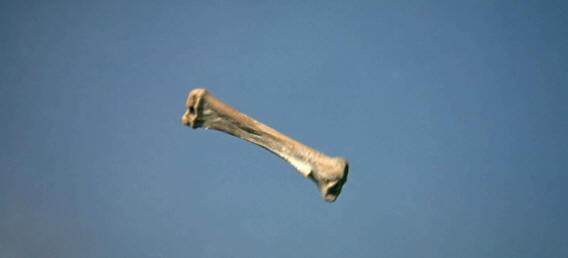 bone spinning